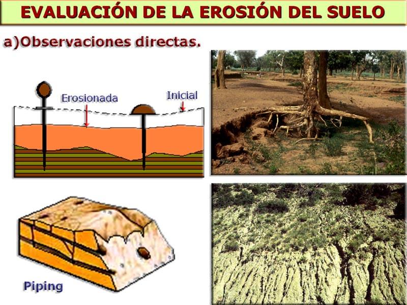 Biolog asur procesos geol gicos externos y sus riesgos for Proceso de formacion del suelo